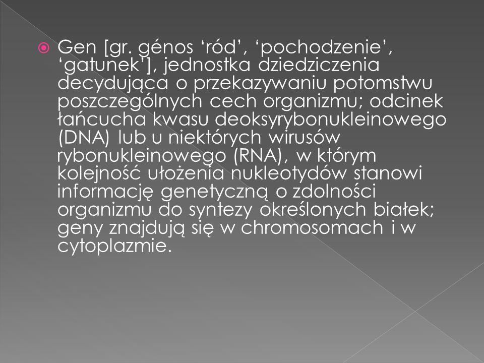 Gen [gr.